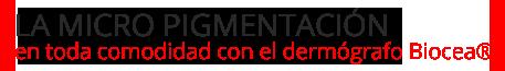 miscropigmentacion2